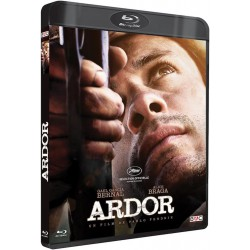 ARDOR - BRD