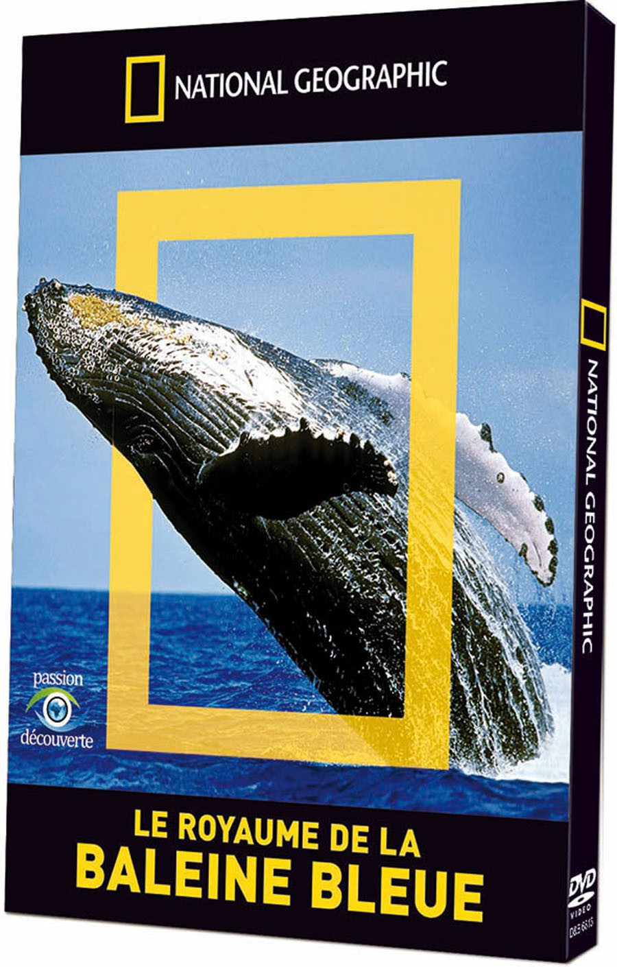 NATIONAL GEOGRAPHIC - LE ROYAUME DE LA BALEINE BLEUE