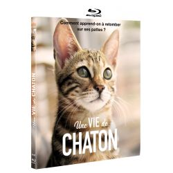 VIE DE CHATON (UNE) - BRD