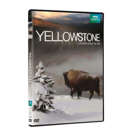YELLOWSTONE - BRD