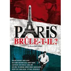 PARIS BRULE T IL ?